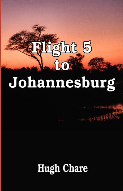 Flight 5 to Johannesburg icon